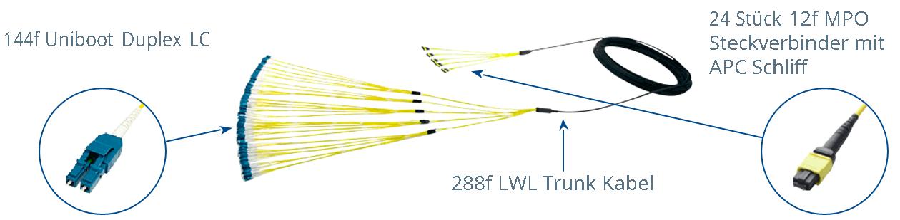 LWL Kabel Sonderanfertigung 288 Faser Trunk Kabel, 144 Faser Uniboot LC Stecker mit 24x 12 Faser MPO Steckverbinder